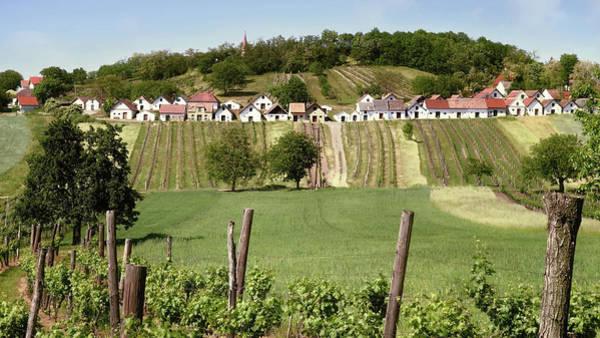 Photograph - Weinviertel Landschaft Galgenberg Kellergasse by Menega Sabidussi