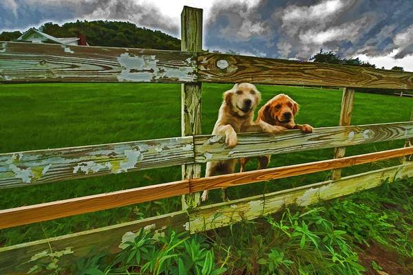 Greeters Photograph - Welcome Home by Dennis Baswell
