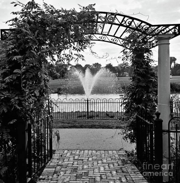 Photograph - Welcome by Robert Knight
