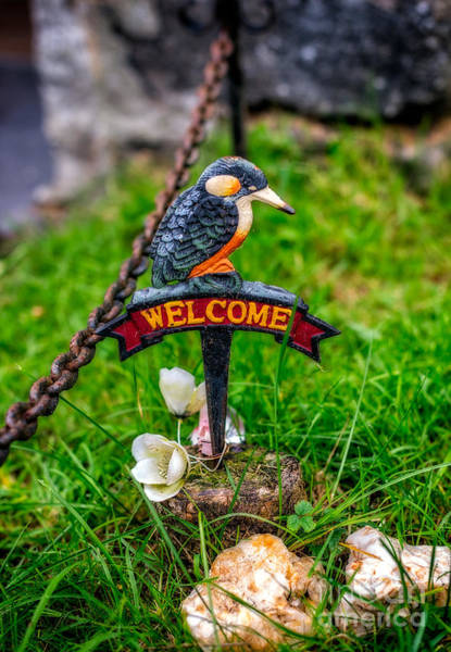 Rusty Chain Photograph - Welcome Sign by Adrian Evans