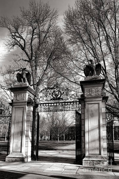 Photograph - Welcome To Princeton University by Olivier Le Queinec