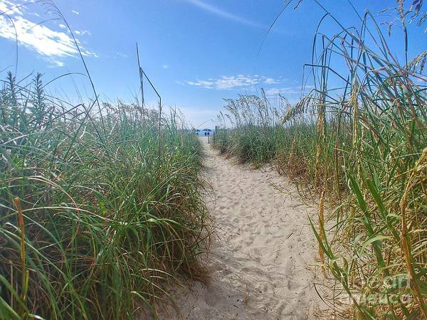 Wall Art - Photograph - Welcome To The Beach - Longer Walk by Noel Adams