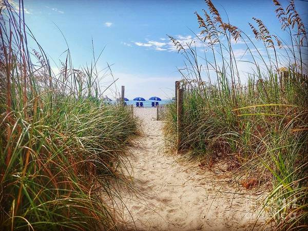 Wall Art - Photograph - Welcome To The Beach by Noel Adams
