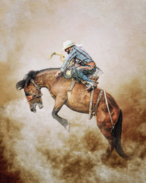 Wall Art - Photograph - Welcome To The Wild Wild West by Ron McGinnis