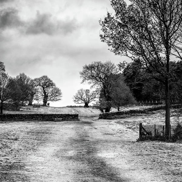 Photograph - Well Trodden Path by Nick Bywater