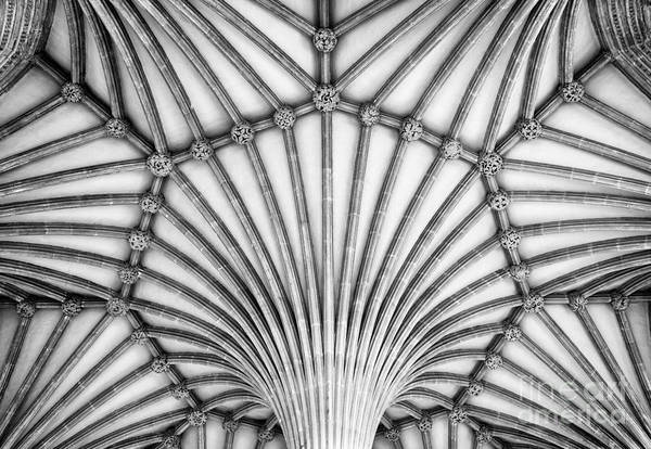 Photograph - Wells Cathedral Chapter House Vaulted Ceiling by Tim Gainey