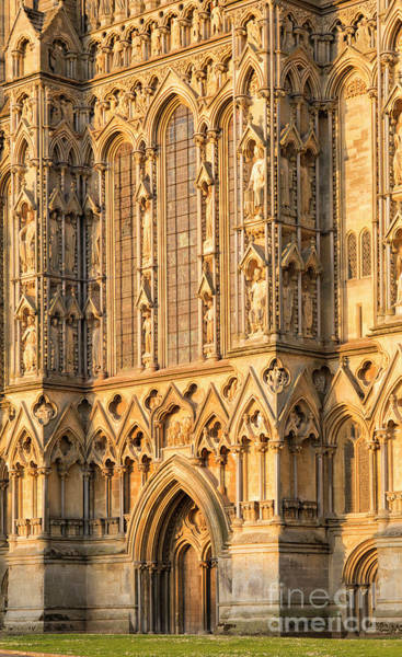 Photograph - Wells Cathedral Golden Glow by Tim Gainey