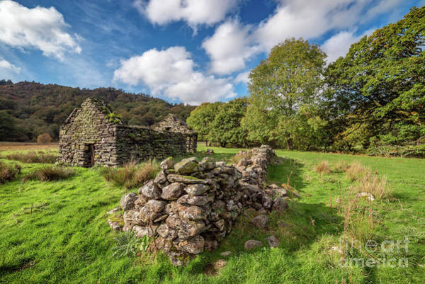 Coed Photograph - Welsh Cottage Ruin by Adrian Evans