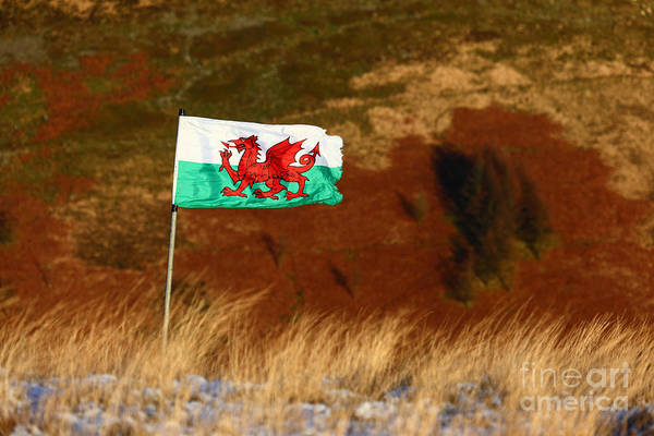 Photograph - Welsh Flag And Mountain Colour by James Brunker