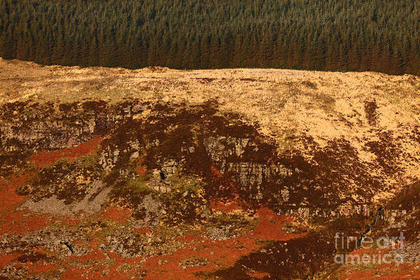 Photograph - Welsh Hillside Abstract 1 by James Brunker