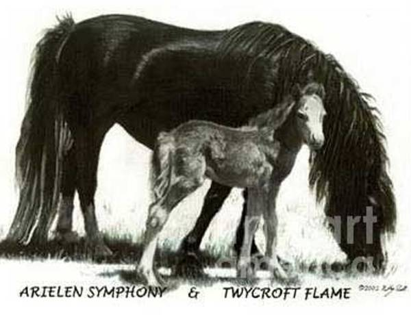 Painting - Welsh Pony Mare And Foal by Kathy Shell