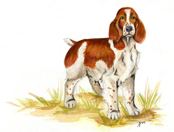 Welsh Springer Spaniel Painting - Welsh Springer Spaniel by Katy Ryan