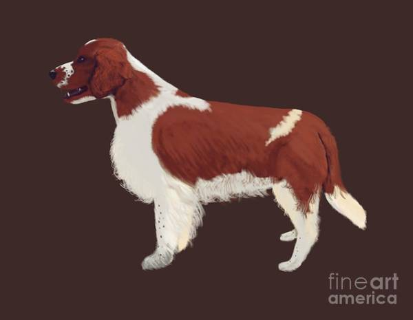 Welsh Springer Spaniel Painting - Welshie Welsh Springer Spaniel Art  by Karen Harding