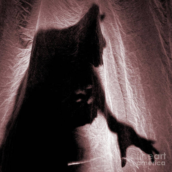 Photograph - Werewolf by Clayton Bastiani