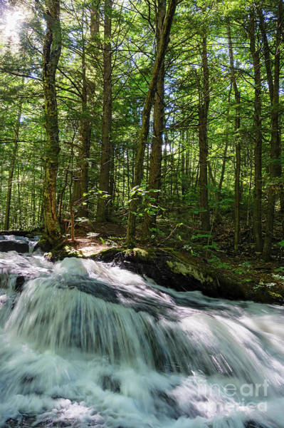 Photograph - West Branch Of The Nezinscot River, Sumner, Maine #00185 by John Bald
