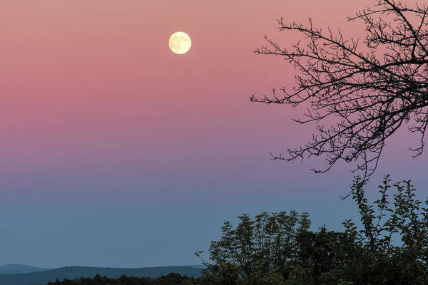 Photograph - West Brattleboro Full Moon by Tom Singleton