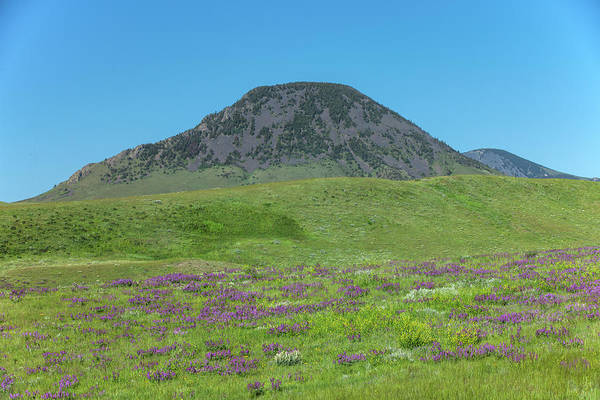 Photograph - West Butte by Todd Klassy