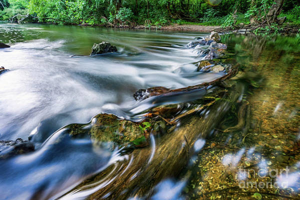 Photograph - West Fork Water Over Log by David Smith