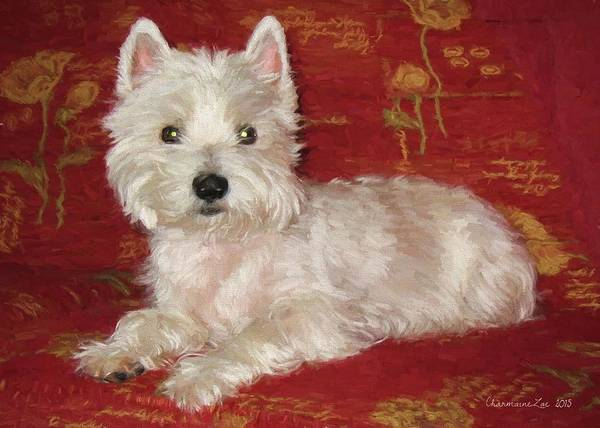 Digital Art - West Highland White Terrier 2 by Charmaine Zoe