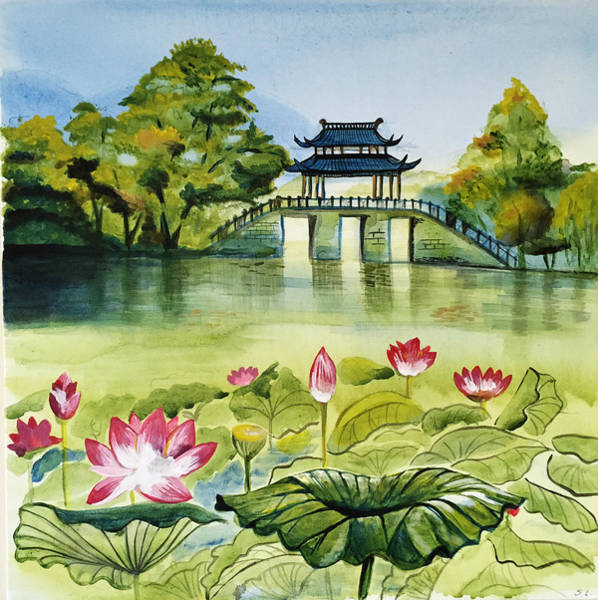 Waterlily Painting - West Lake In Summer by Shan Lou