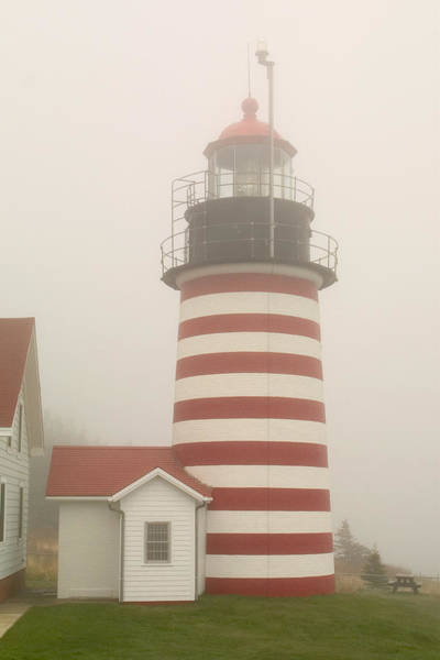 Wall Art - Photograph - West Quody Head Lighthouse by Brent L Ander
