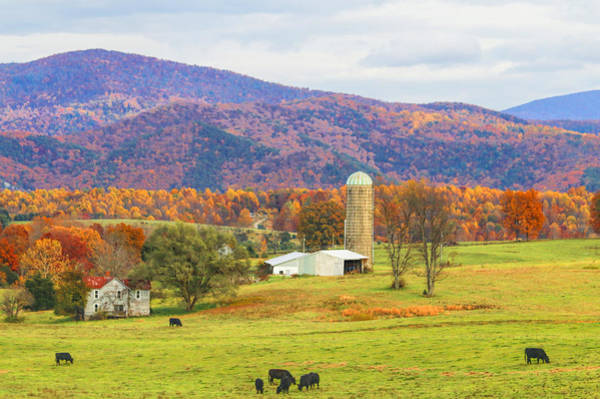 Photograph - West Virginia Farm by Ola Allen