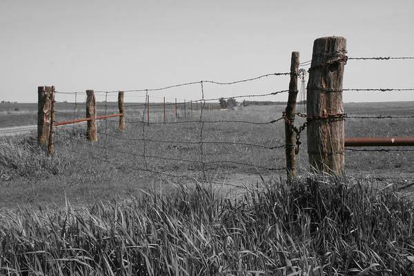 Photograph - Western Flint by Dylan Punke