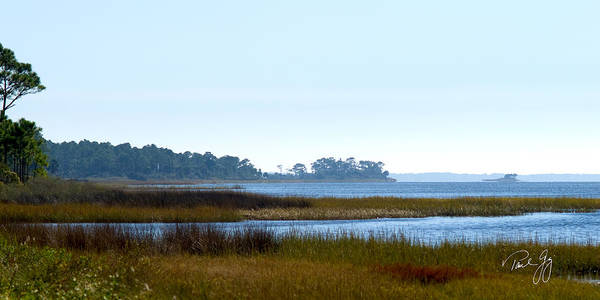 Wall Art - Photograph - Western Florida Panhandle by Paul Gaj