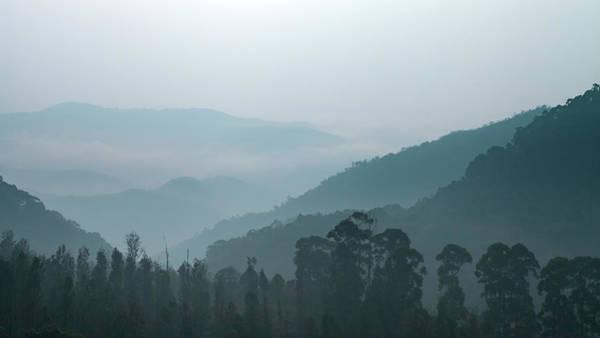 Photograph - Western Ghats, Kodaikanal by Mahesh Balasubramanian