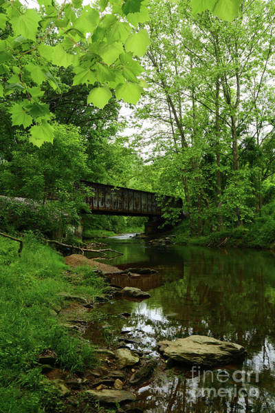 Photograph - Western Maryland Railroad Bridge Across The Patapsco River by James Brunker