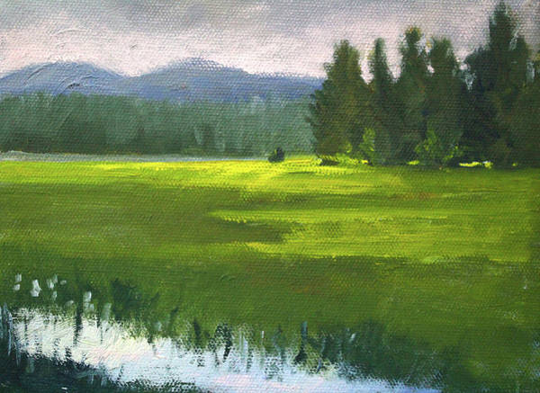 Wall Art - Painting - Western Meadow by Nancy Merkle