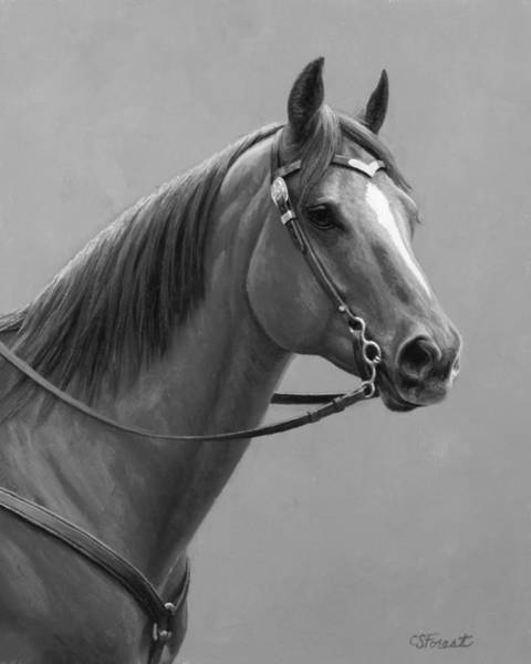 Wall Art - Painting - Western Quarter Horse Black And White by Crista Forest