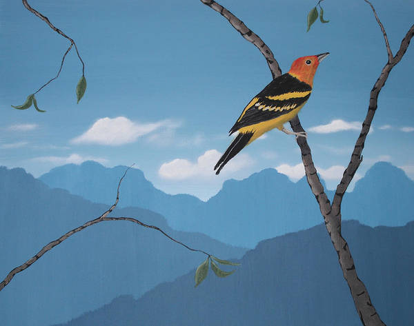 Wall Art - Painting - Western Tanager by Candace Shockley