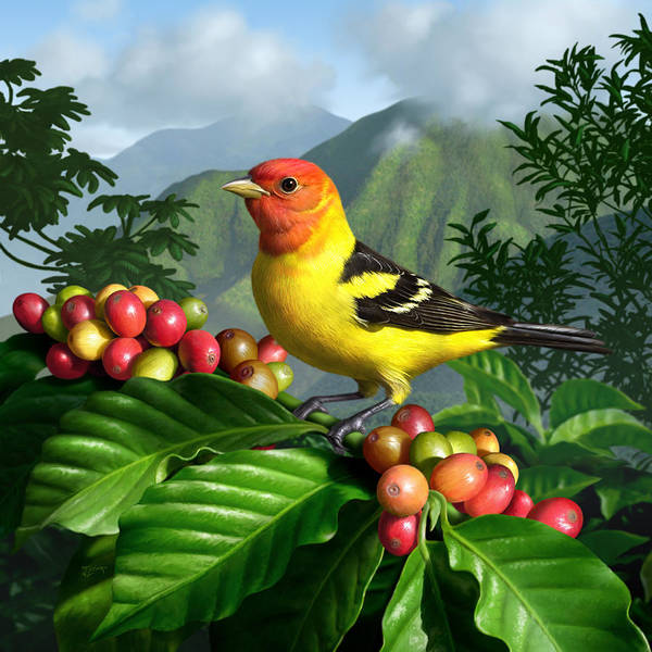 Cloud Digital Art - Western Tanager by Jerry LoFaro