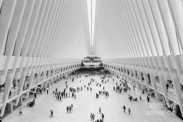 Photograph - Westfield World Trade Center II by Clarence Holmes