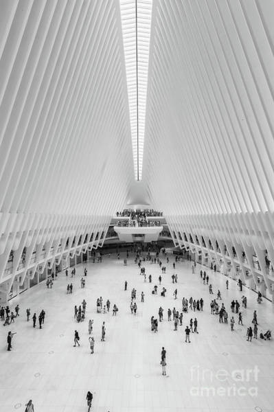Photograph - Westfield World Trade Center Iv by Clarence Holmes