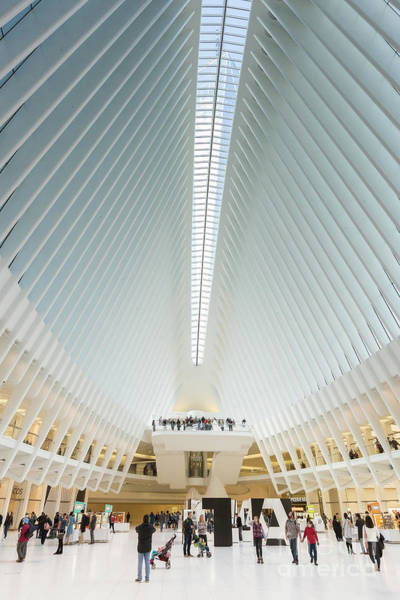 Photograph - Westfield World Trade Center Ix by Clarence Holmes