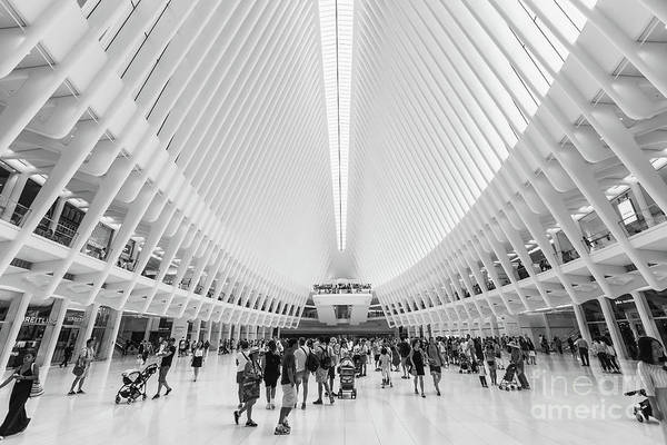 Photograph - Westfield World Trade Center Vi by Clarence Holmes