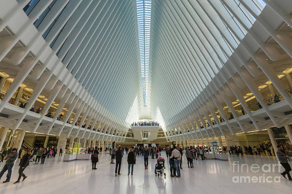 Photograph - Westfield World Trade Center Vii by Clarence Holmes