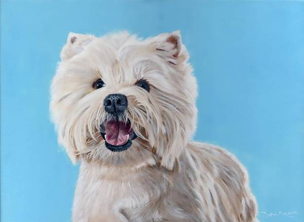 Painting - Westie by John Neeve