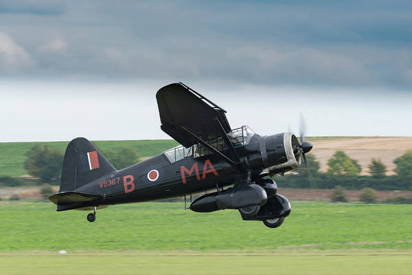 Photograph - Westland Lysander Taking Off by Gary Eason