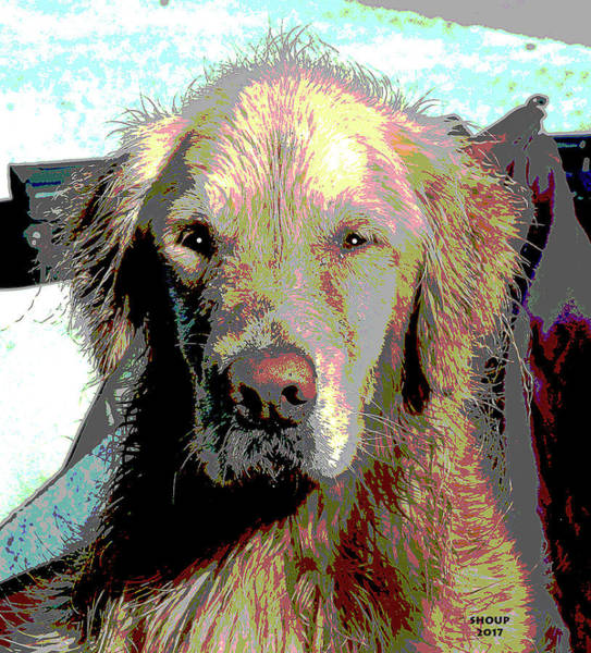 Golden Retriever Mixed Media - Wet Dog by Charles Shoup