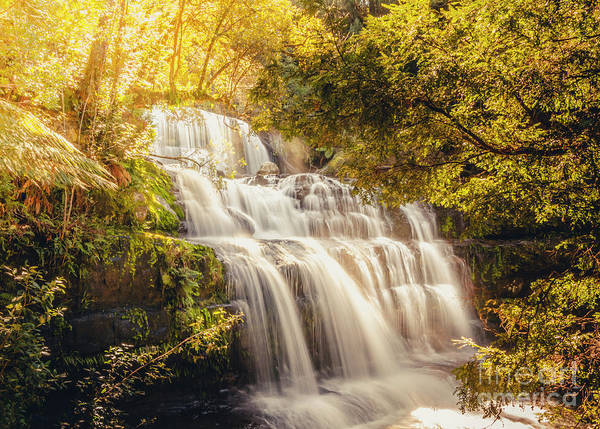 Beautiful Park Photograph - Wet Dreams by Jorgo Photography - Wall Art Gallery