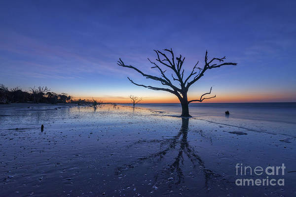 East Bay Photograph - Wet Reflections At Botany Bay Beach by Michael Ver Sprill