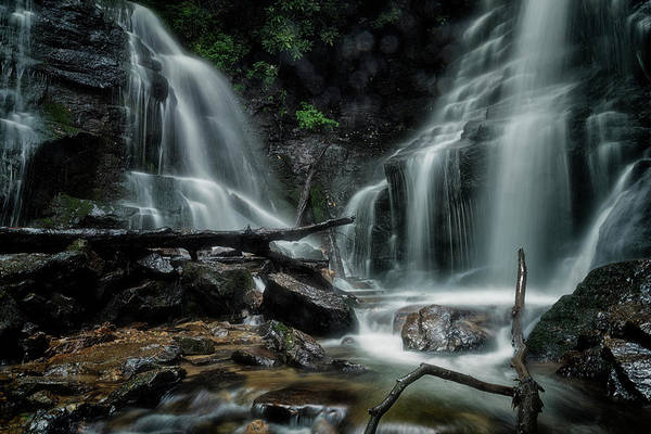 Photograph - Wet by Russell Pugh