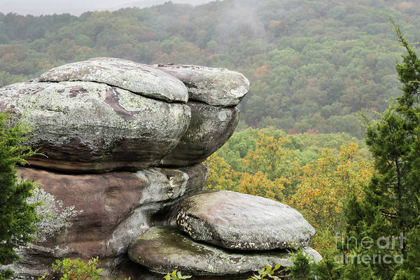 Photograph - Wet Sandstone by Andrea Silies