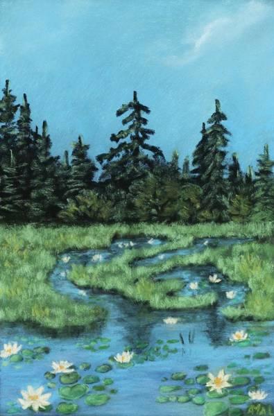 Painting - Wetland - Algonquin Park by Anastasiya Malakhova