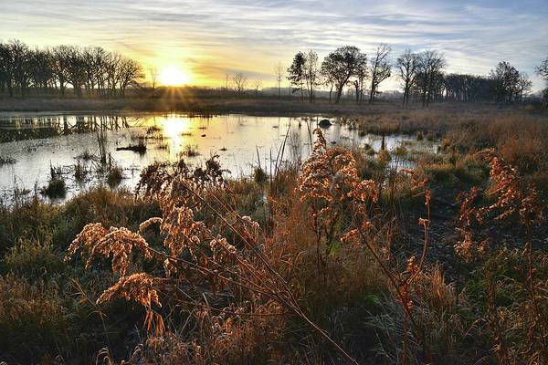 Photograph - Wetland Sunrise In Hackmatach National Wildlife Refuge by Ray Mathis