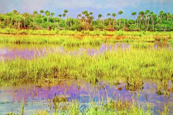Photograph - Wetlands Along The Loop by Alice Gipson
