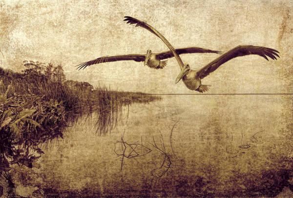 Photograph - Wetlands by Pete Rems